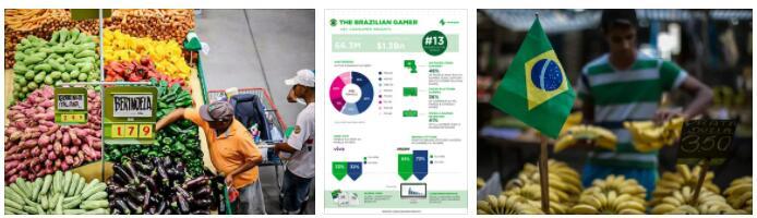 Brazil Economic Sectors