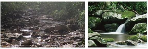 Great Smoky Mountains National Park (World Heritage)